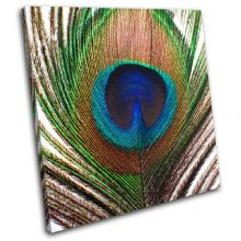 Peacock Feather Animals - 13-0802(00B)-SG11-LO
